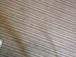 Dirty tired carpet