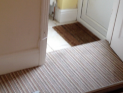 Aquadri midway through the carpet cleaning process